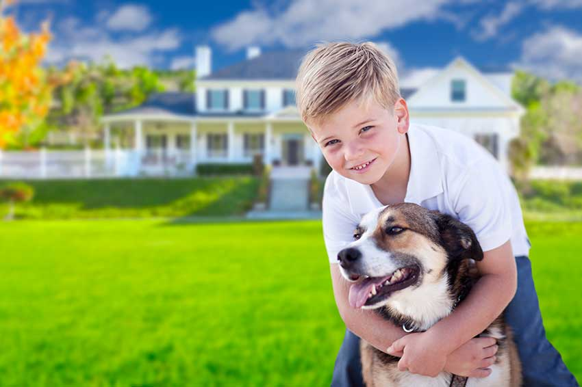 boy with dog in yard